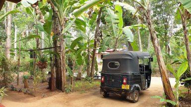 Les 10 trucs à savoir avant de partir au Sri Lanka