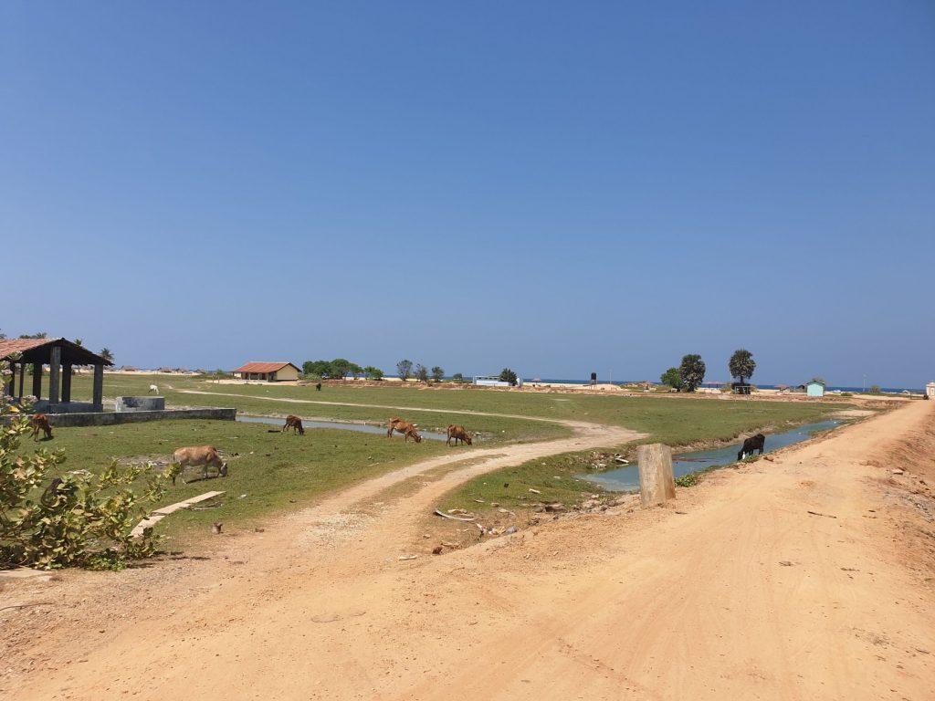 Péninsule de Jaffna, vers Point Pedro